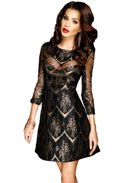 Gold Sheer Lace Overlay Sleeved Skater Dress